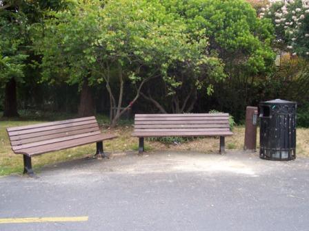 Local Ecology Blog Local Ecologist Neighborhood Sitting