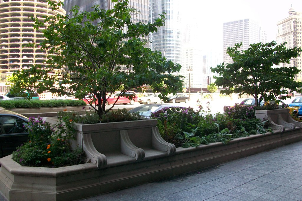 Chicago street garden (Image Credit: Local Ecology)