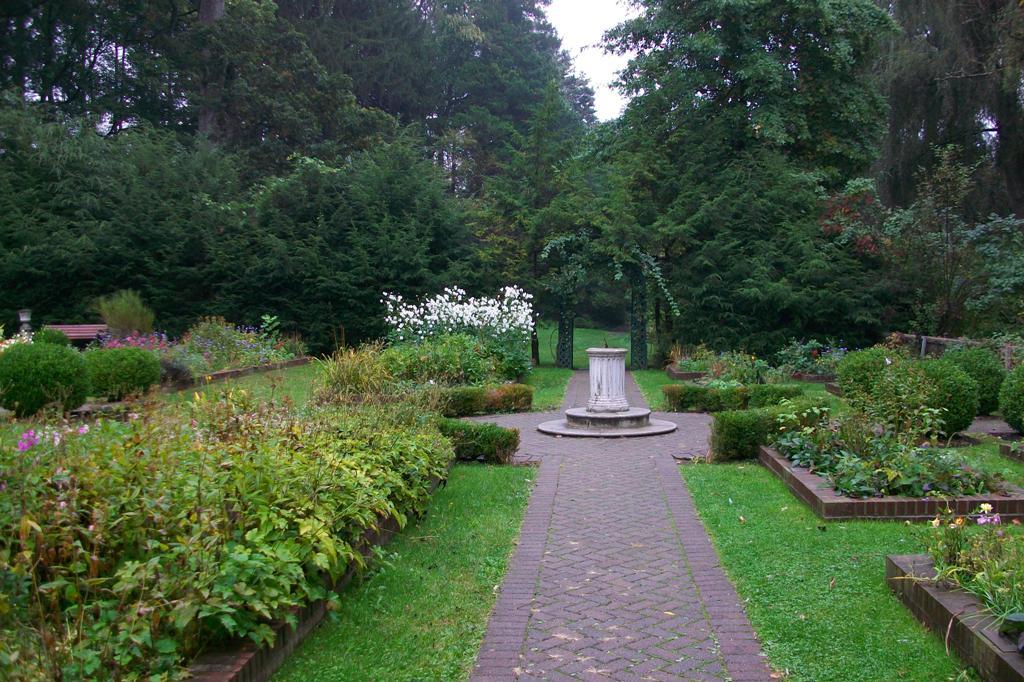 Local ecologist vassar 39 s shakespeare garden for Local landscape gardeners