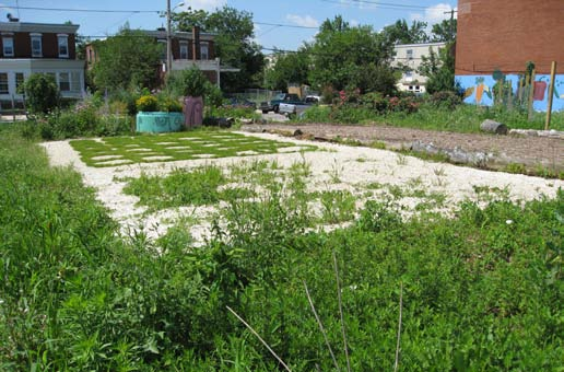 local ecologist not garden variety in philadelphia